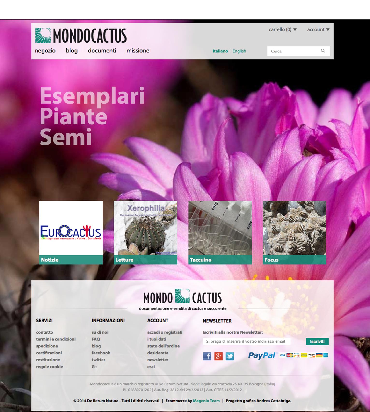 Mondocactus